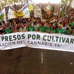 Madres de familia piden uso medicinal de marihuana (VIDEO)