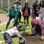 Colombia: Bosque con 8 mill. de árboles evocará víctimas del conflicto
