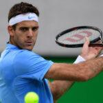 Copa Davis: Del Potro en dramático partido gana en semifinal a Murray