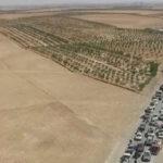 Siria: Estado Islámico usa a civiles rehenes como escudos humanos
