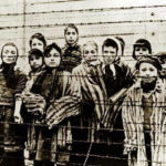 Alemania: Tras 70 años descubren 8 presuntos criminales de guerra nazis