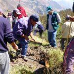SENASA intensifica acciones para el control sanitario en Apurímac