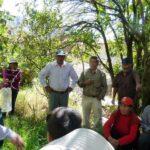 Apurímac: SENASA coordina acciones para control de mosca de la fruta