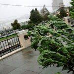 EEUU: Hermine llegará como huracán a la costa noroeste de Florida