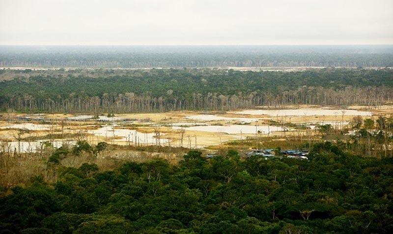 Reserva-Nacional-de-Tambopata