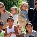 Brad Pitt y Angelina Jolie acuerdan visitas supervisadas y terapia