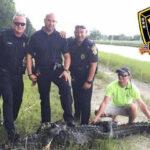 EEUU: Policías capturan enorme caimán que merodeaba en dos escuelas