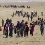 ACNUR se prepara para que 700,000 civiles huyan de Mosul