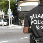 EEUU: Detienen a 3 encapuchados acusados de desatar pánico en Miami