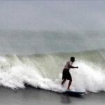 EEUU: Tres surfistas fueron heridos por tiburones en la costa de Florida