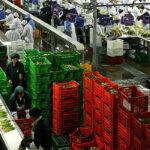 BCR: Balanza comercial con superávit de US$ 25 millones en agosto