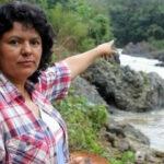 ONU: preocupación por robo de expedientes del crimen de activista