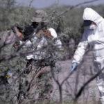México: Hallan fosa común con 4,600 fragmentos óseos humanos