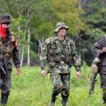 El ELN libera a civil que tenía secuestrado en la frontera con Venezuela