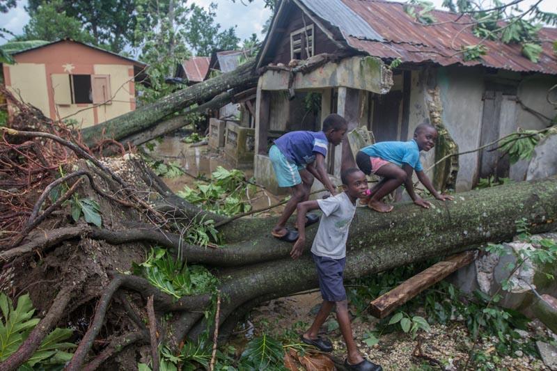 Sube a 264 la cifra de muertos por 'Matthew' en Haití