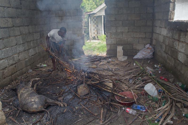 CORRIGE UBICACIÓN. HAI07 - Grand Goave (HAITÍ), 10/05/2016- Aspecto de una vivienda afectada por los fuertes vientos y la lluvia hoy, miércoles 5 de octubre de 2016, un día después del paso del huracán Matthew en Grand Goave (Haití). El huracán Matthew tocó tierra ayer en Haití dejando a su paso al menos nueve muertos, miles de desplazados y comunidades incomunicadas, principalmente en el suroeste de la nación caribeña. EFE/ Bahare Khodabande