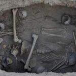Plantas de marihuana hallan en tumba china de hace 2,000 años
