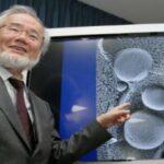 Nobel de Medicina 2016 conceden al japonés Yoshinori Ohsumi
