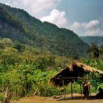 Declaran de interés público crear reserva biósfera en selva central de Perú