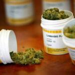 Argentina: Congreso aprueba ley que permite uso de la marihuana medicinal