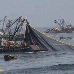 Produce autoriza la segunda temporada de pesca de anchoveta
