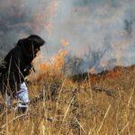 Gobierno declara emergencia en siete distritos afectados por incendios forestales