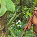 Relatora ONU alerta amenaza a la supervivencia de indígenas peruanos