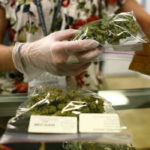 Florida: 71.11% de electores aprobó el uso terapéutico de la marihuana