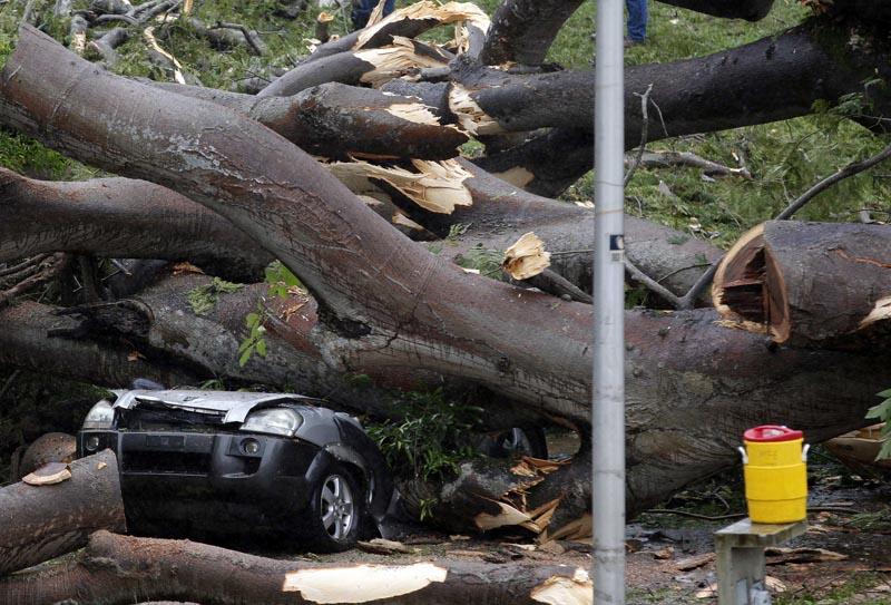 PA2007. CIUDAD DE PANAMÁ (PANAMÁ), 22/11/2016.- Fotografía de árbol que cayó sobre un vehículo a causa de la tormenta tropical Otto hoy, martes 22 de noviembre de 2016, en la Ciudad de Panamá (Panamá). Las autoridades removieron el árbol que cayó sobre el auto y mató a un menor en Panamá. Al menos cuatro muertos, un desaparecido, medio centenar de viviendas destruidas, suspensión de clases e interrupciones en los aeropuertos causó hasta hoy la tormenta tropical Otto, anunciaron las autoridades de Panamá. EFE/Alejandro Bolívar