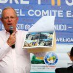 Sembraremos 2 millones de hectáreas de bosques amazónicos