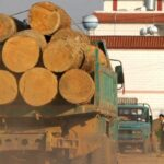 Birmania: Asesinan a  periodista que investigaba el contrabando de madera