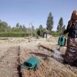 ONU denuncia que barreras a la mujer rural impiden desarrollo sostenible