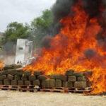 Paraguay: Incineran 302 kilos de cocaína incautados al cartel de Sinaloa