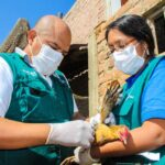 Perú suspende importación de aves de Chile por influenza aviar