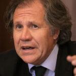 Cuba niega visa a Secretario General de la OEA por homenaje disidente