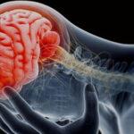 Neurooncóloga: Neuronas ayudan al desarrollo del cáncer en el cuerpo