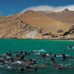 Más de 1.8 millones de turistas visitaron áreas naturales protegidas de Perú en 2016