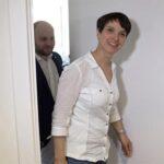 Ultraderecha alemana pierde apoyos en medio de escándalos internos