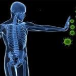 Bajos niveles de oxígeno mejoran respuesta del sistema inmune ante infección