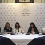Argentina: Activistas y políticas llaman a movilizarse el próximo 8 de marzo