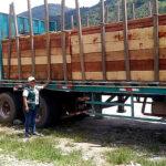 Duro golpe al tráfico ilegal de madera en la selva central