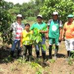 Devida recupera más de 700 hectáreas de suelos degradados