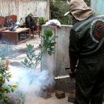 Ministerio de Salud fumigó 120 mil casas contra el dengue
