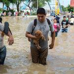 Congreso discutirá proyectos sobre atención a emergencia