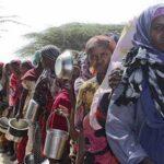 ACNUR alerta muertes masivas en Cuerno África, Nigeria y Yemen por hambruna