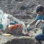 Con nueva técnica lospaleontólogos ya no necesitan fósiles para analizar el ADN