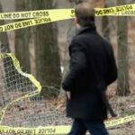 EEUU: Hallan 4 cadáveres con huellas de golpiza en parque de Nueva York
