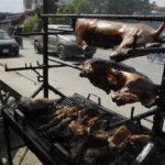 Taiwán: Congreso prohíbe consumo alimenticio de carne de perros y gatos (VIDEO)