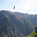 Suspenden ingreso turistas al Valle del Colca por protestas sociales