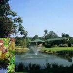 Colombia: 500 plantas carnívoras se expondrán en Jardín Botánico